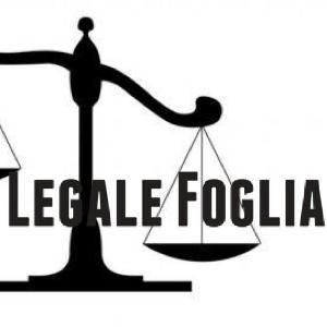 Domenico Foglia